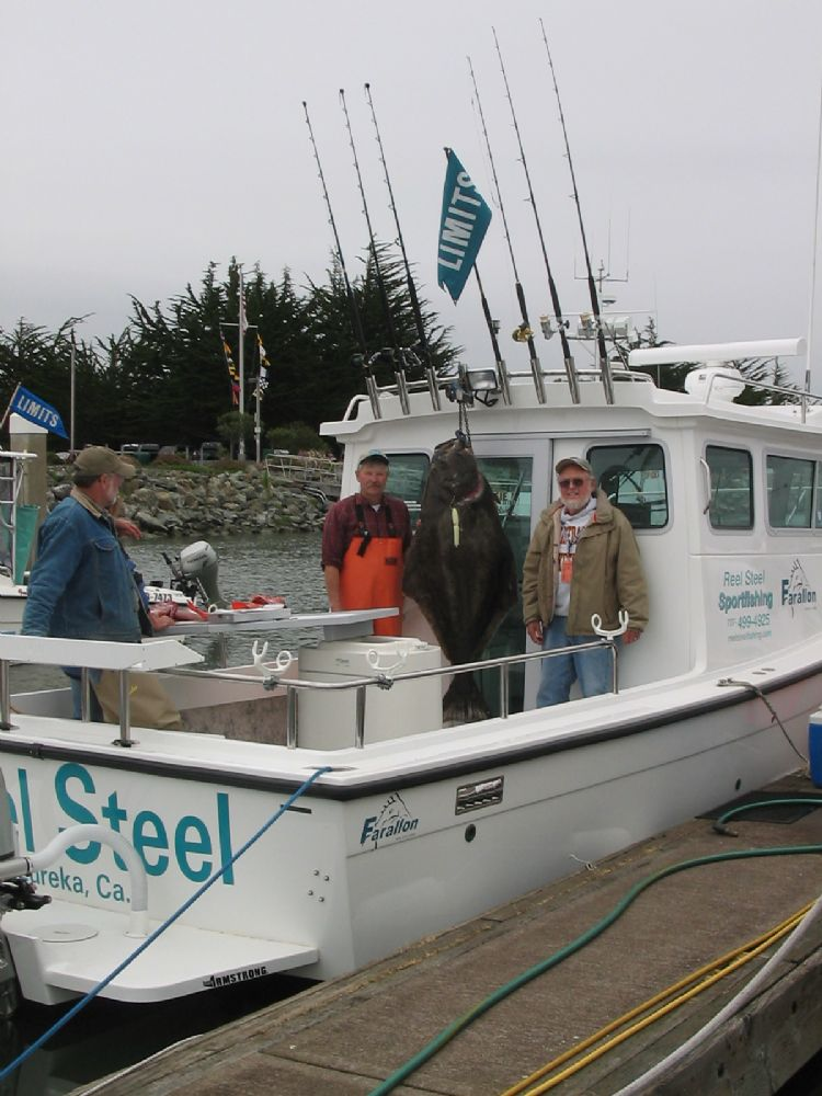 reel steel sport fishing eureka humboldt county california